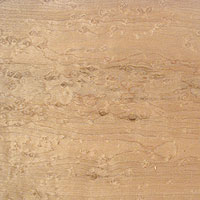 birdseye maple figured wood